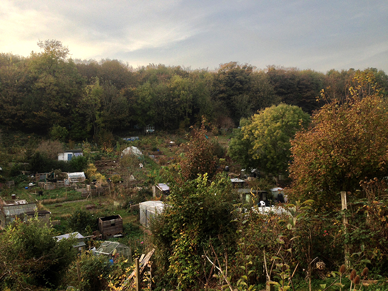 evening_allotment