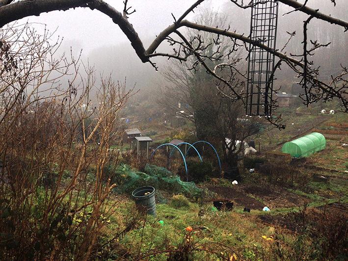 allotment_mist-4