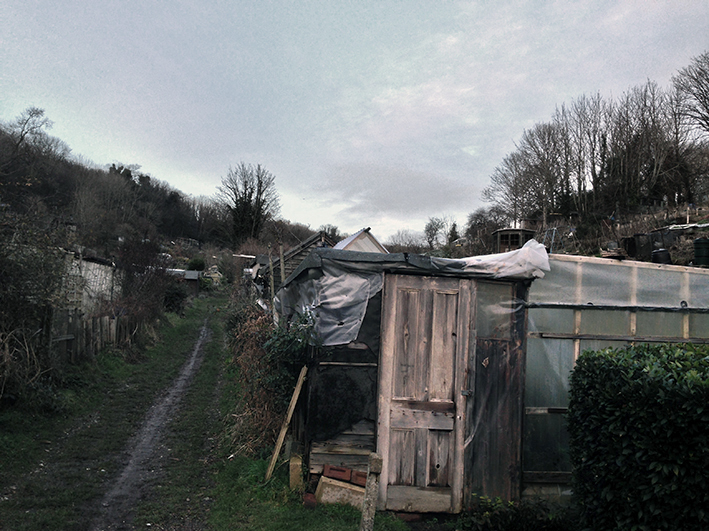 allotment-path